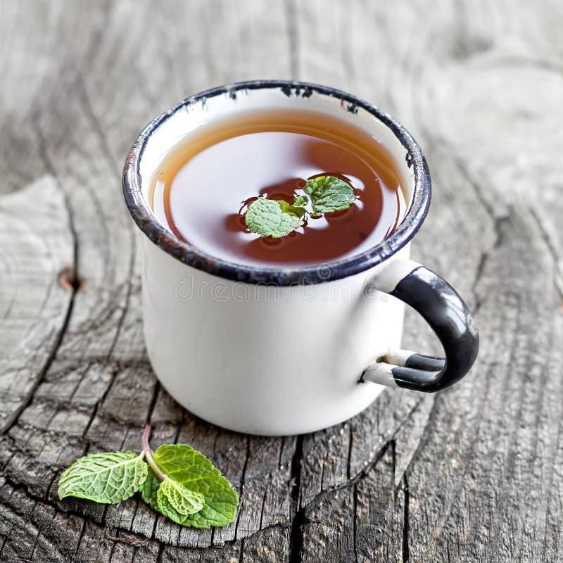 Chá da hortelã imagens de stock royalty free