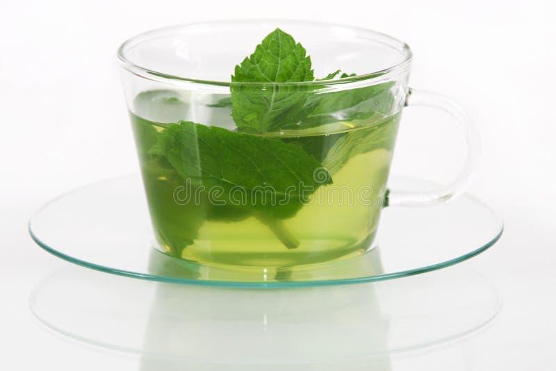 Chá da hortelã imagem de stock royalty free