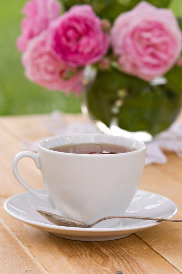 Chá da mola no jardim foto de stock