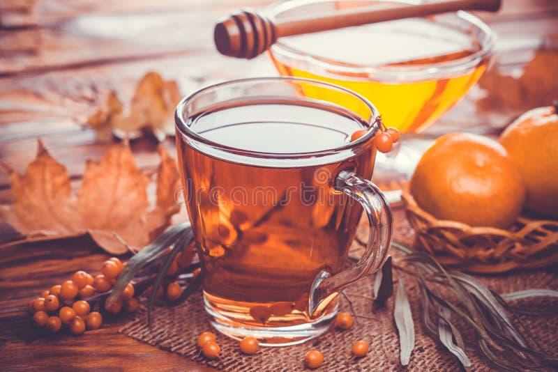 Chá de bagas do mar-espinheiro cerval com mel imagem de stock royalty free