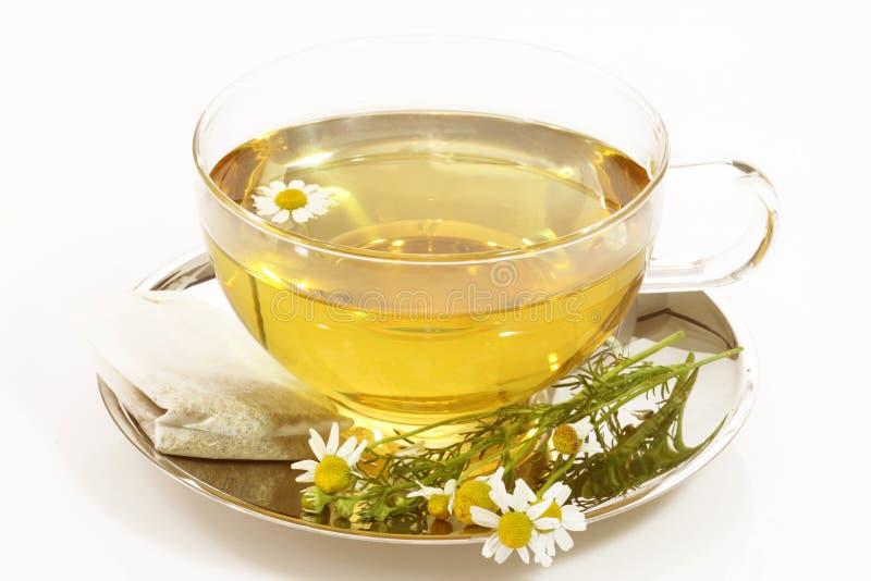 Chá de camomila fotografia de stock royalty free