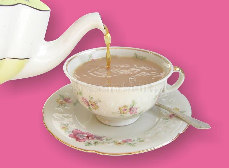 Chá de derramamento fotografia de stock royalty free