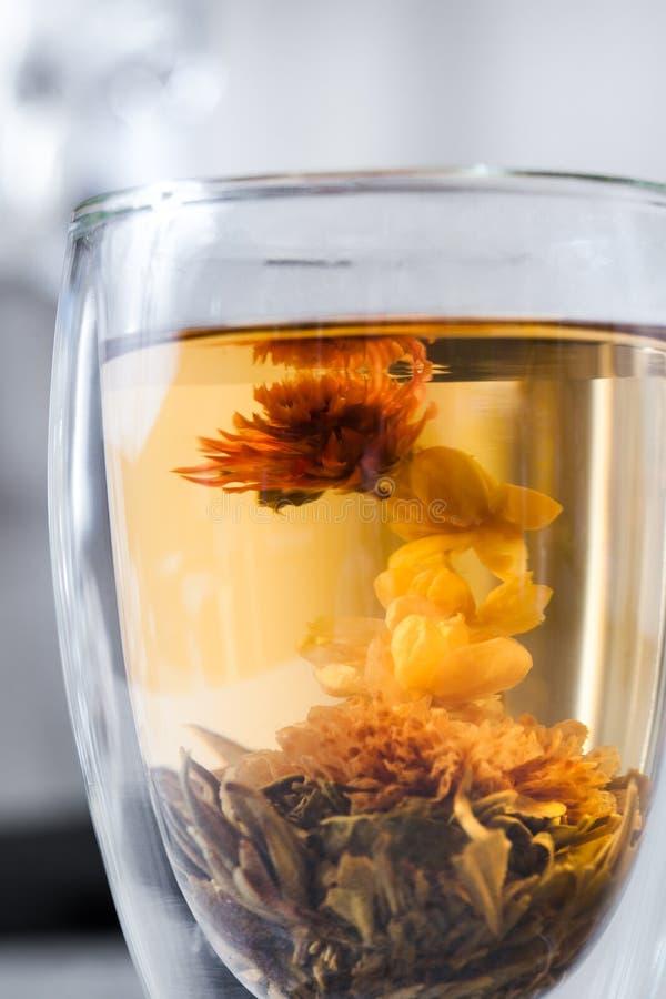 Chá de florescência imagens de stock