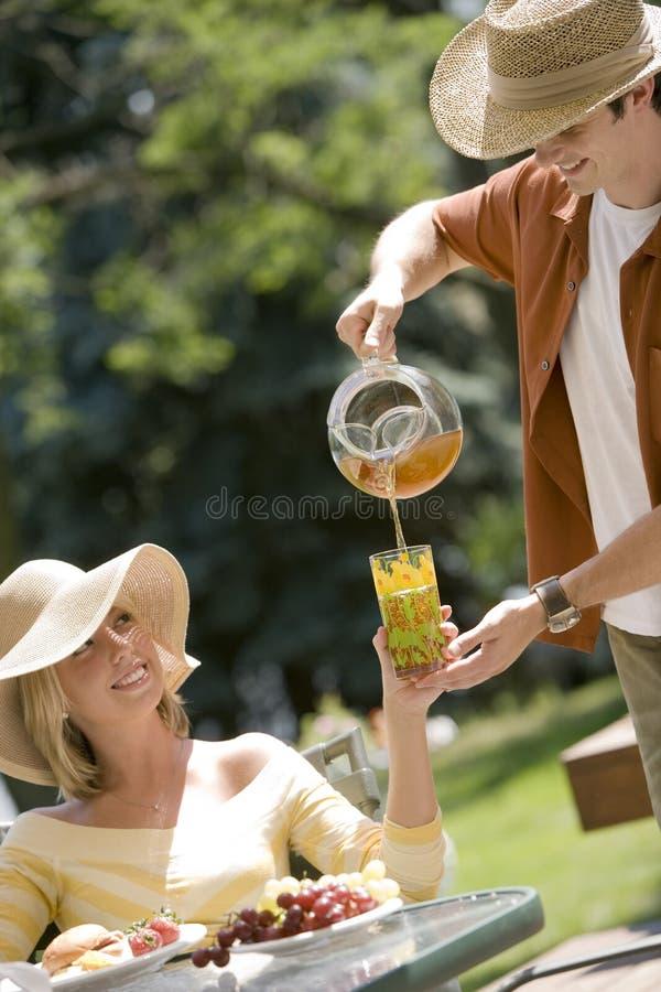 Chá de gelo do serviço no piquenique fotografia de stock royalty free