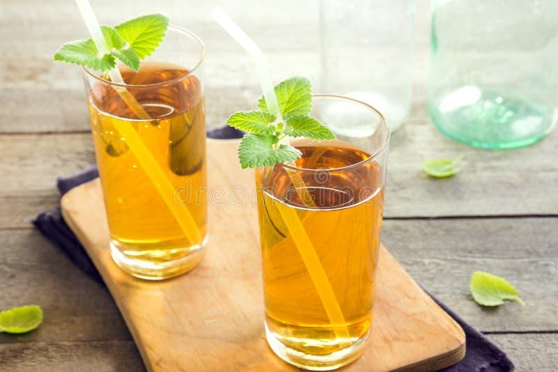 Chá de Kombucha imagem de stock