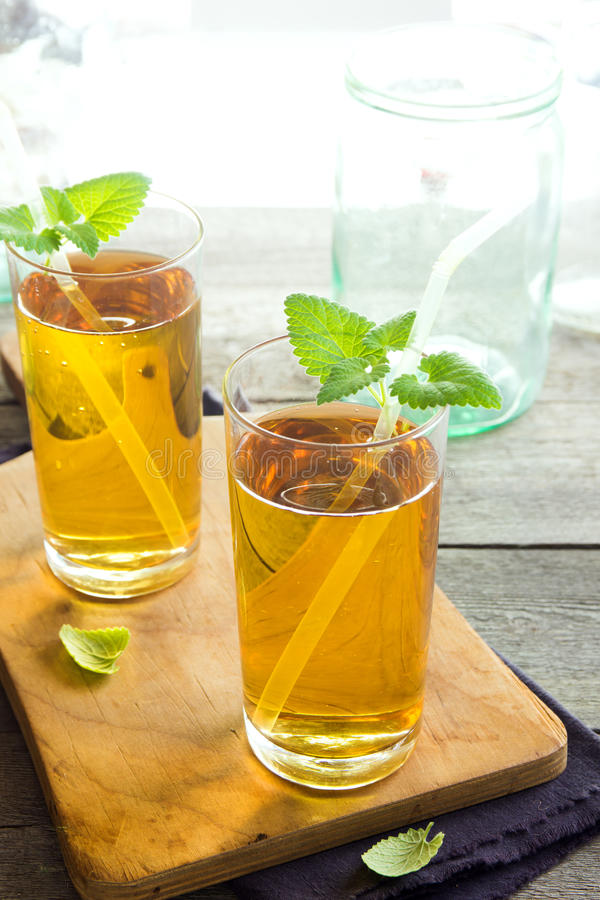 Chá de Kombucha fotografia de stock royalty free