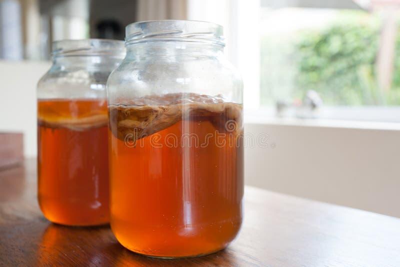 Chá de Kombucha em um frasco de vidro fotos de stock