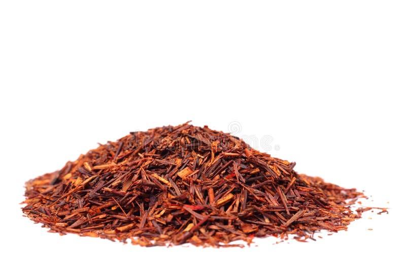 Chá de Rooibos imagens de stock royalty free