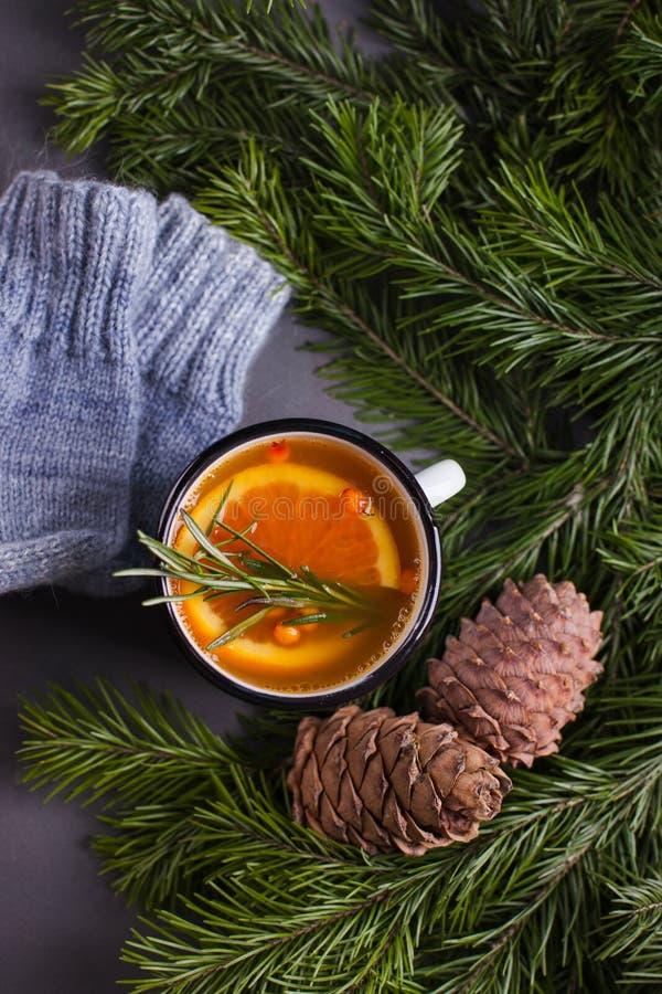 Chá de Taiga com laranja e fundo acolhedor das especiarias, do inverno ou do outono, árvore de abeto, sopace da cópia fotografia de stock