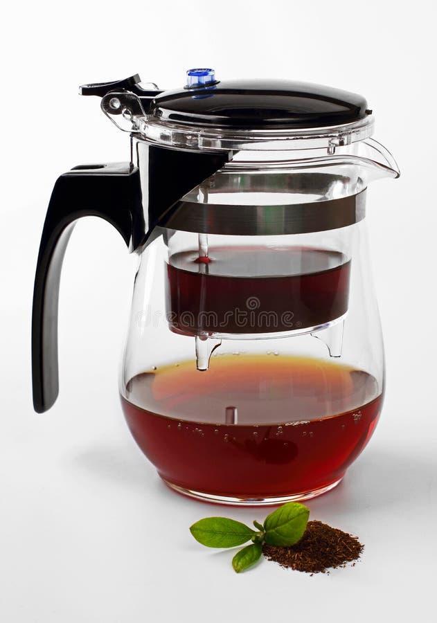 Chá de vidro Infuser/filtro fotos de stock royalty free