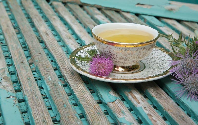 Chá do cardo de leite fotografia de stock royalty free