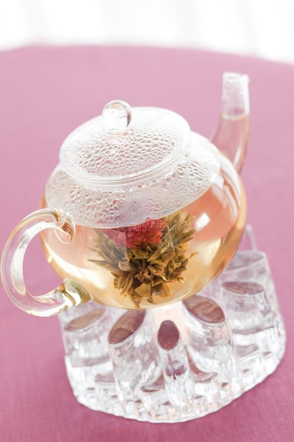 Chá do chinês da flor fotos de stock