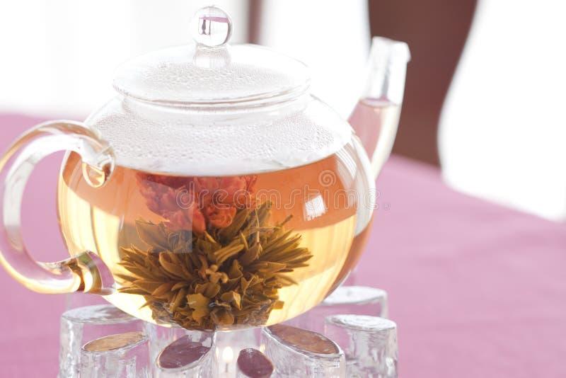 Chá do chinês da flor imagens de stock
