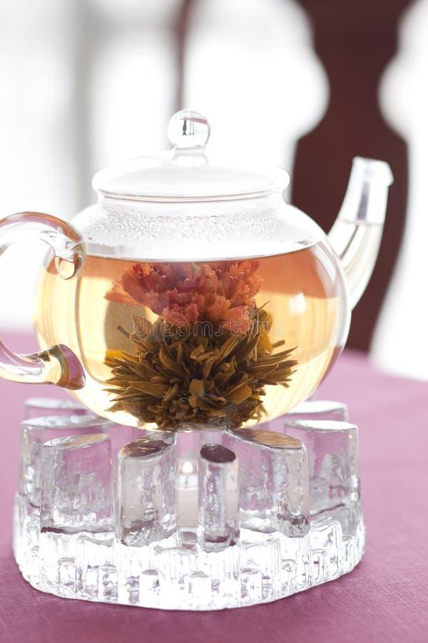 Chá do chinês da flor imagem de stock royalty free