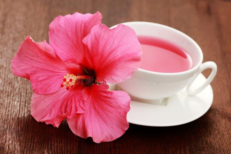 Chá do hibiscus fotografia de stock royalty free