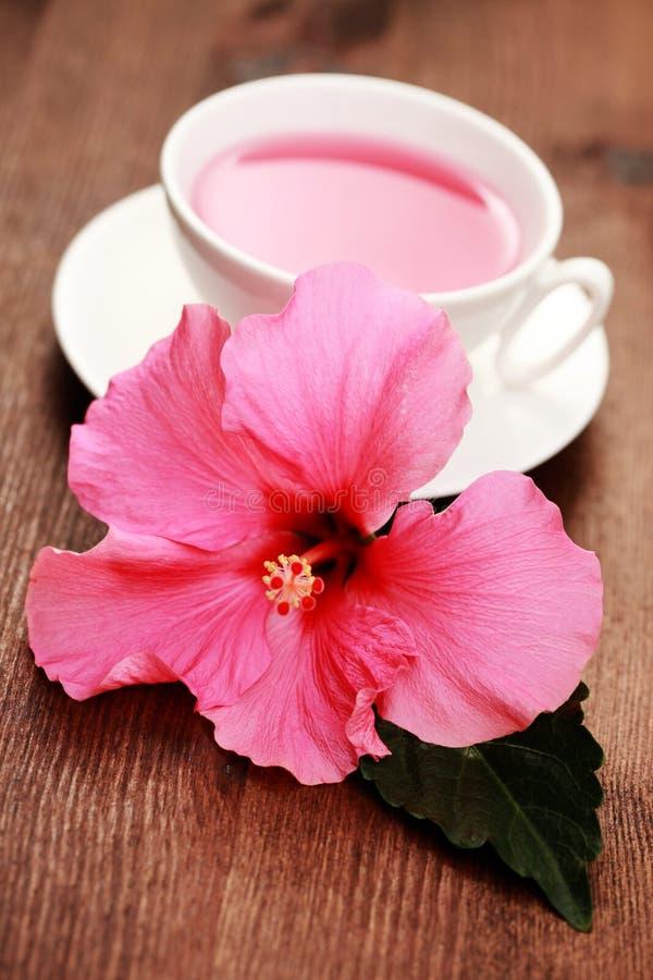 Chá do hibiscus imagens de stock