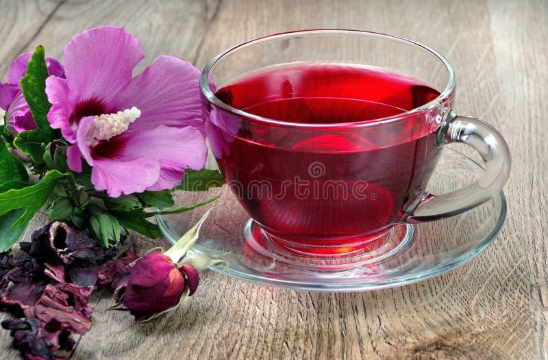Chá do hibiscus em um copo de vidro em uma tabela de madeira entre as pétalas cor-de-rosa e o chá seco Flor do hibiscus Chá da vi fotografia de stock