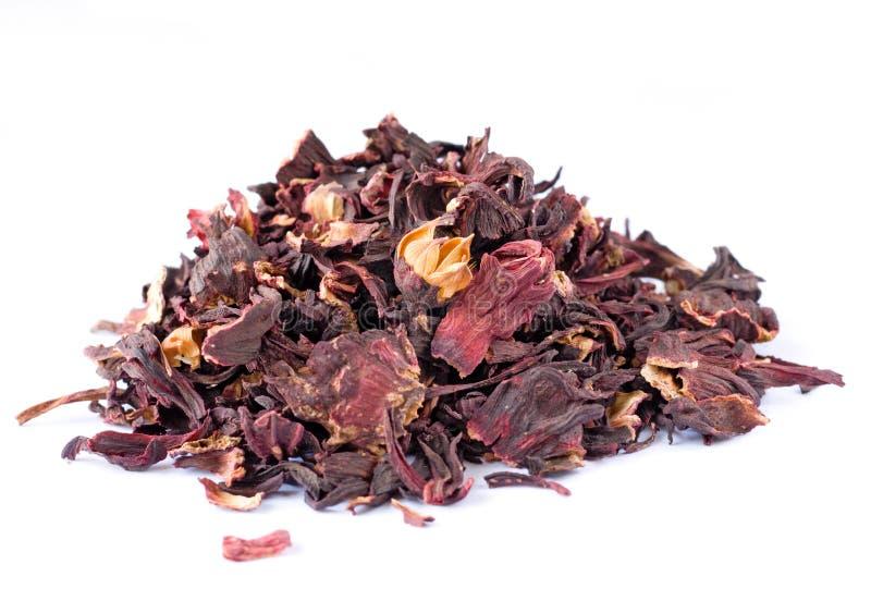 Chá do hibiscus no branco fotografia de stock royalty free