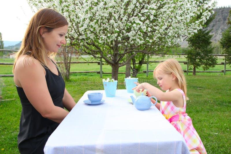 Chá do jardim fotografia de stock