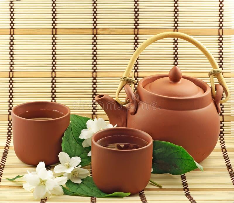Chá do jasmim foto de stock