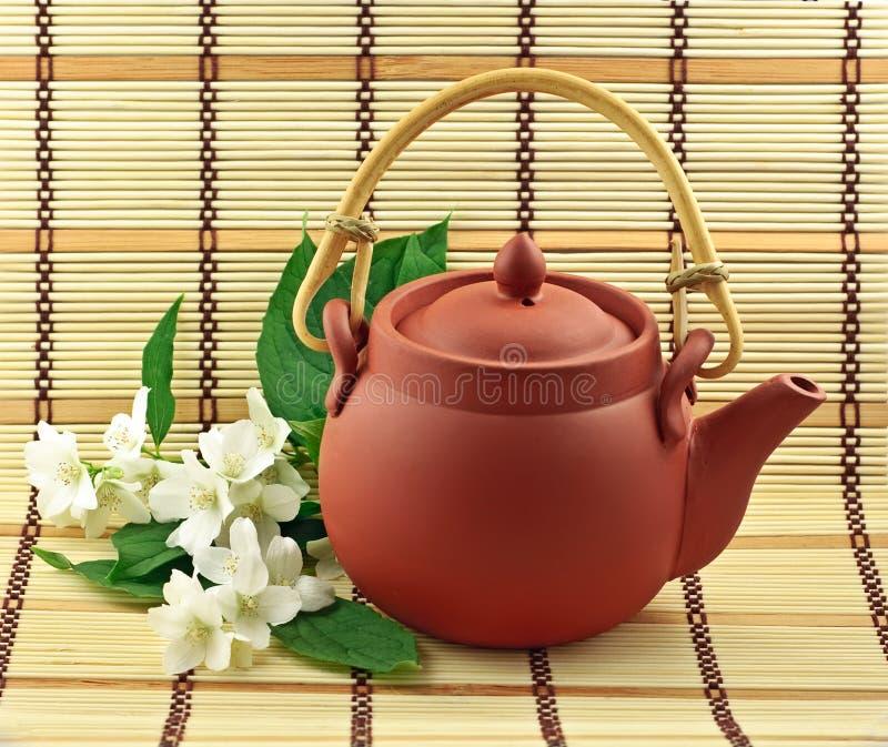 Chá do jasmim imagem de stock
