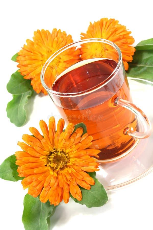 Chá do Marigold fotografia de stock