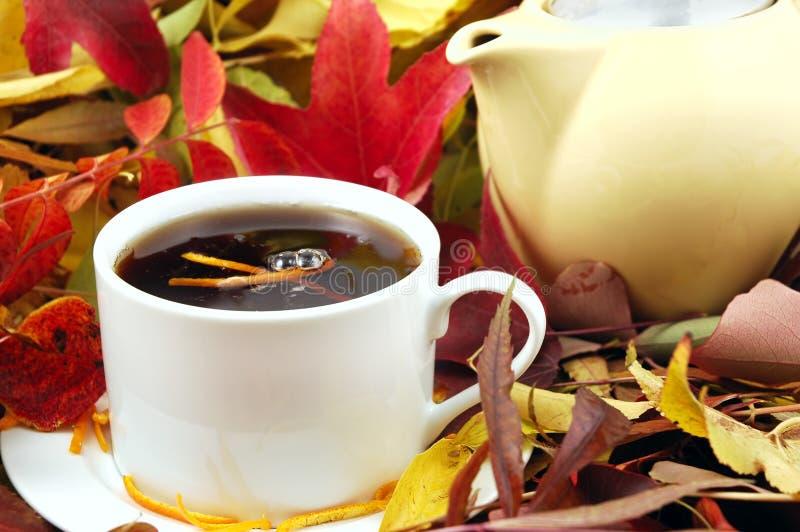 Chá do outono foto de stock
