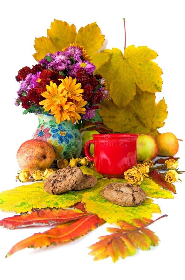 Chá do outono fotografia de stock