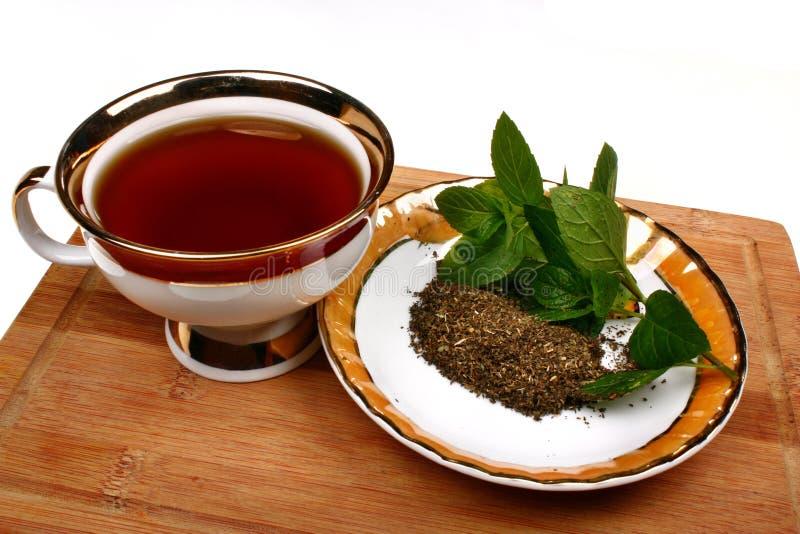 Chá do pulegium do mentha da hortelã fotos de stock royalty free