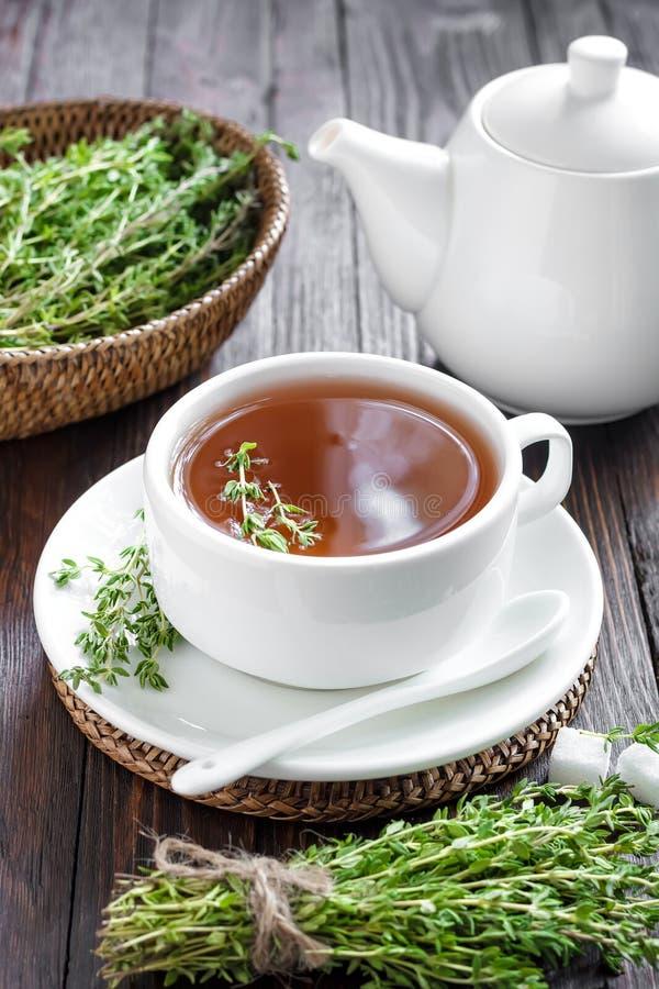Chá do tomilho fotos de stock royalty free
