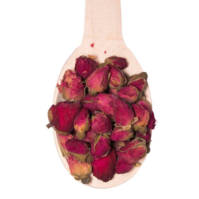 Chá dos botões secos das rosas em uma colher de madeira isolada no fundo branco imagens de stock royalty free