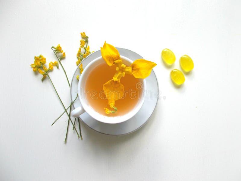 Chá em um copo branco com flores amarelas imagens de stock royalty free