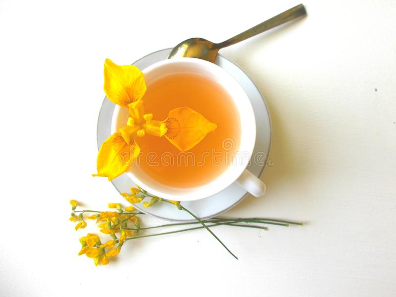 Chá em um copo branco com flores amarelas imagem de stock