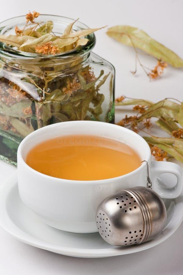 Chá erval. imagem de stock