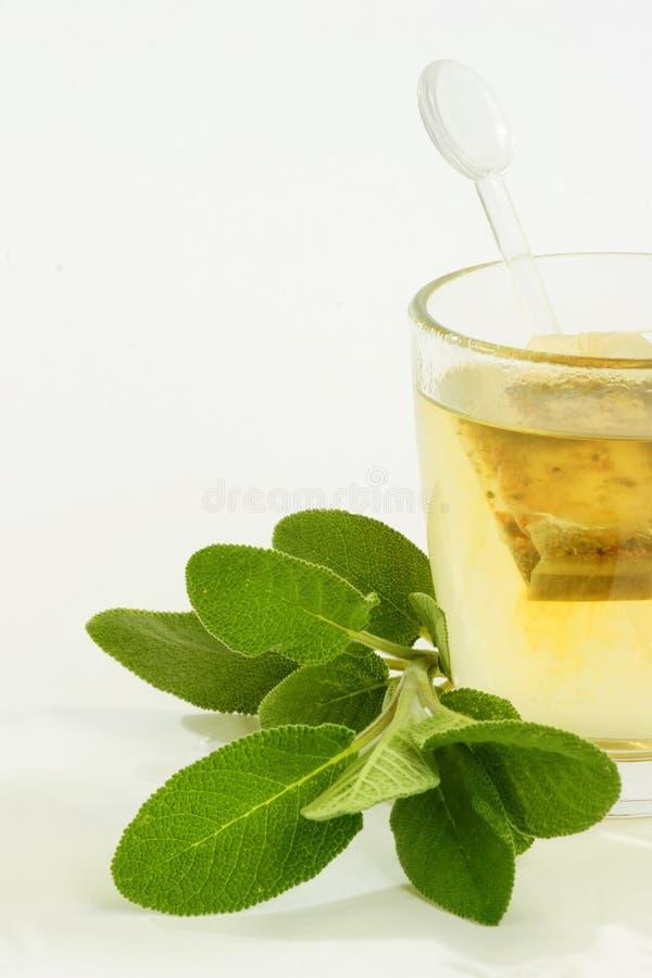 Chá erval imagens de stock royalty free