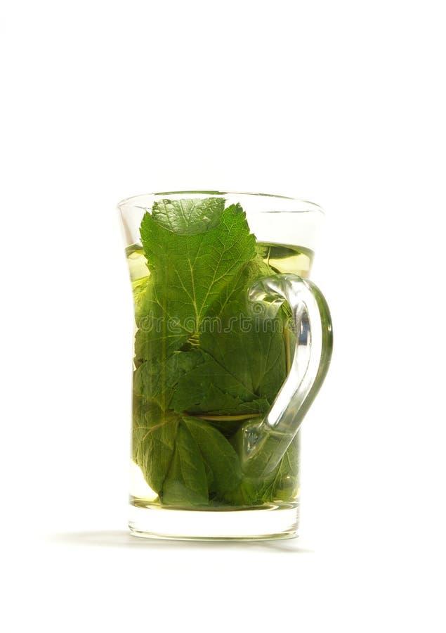 Chá erval da passa de Corinto fotos de stock