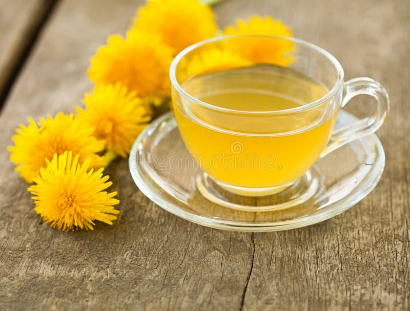 Chá erval no copo de vidro fotos de stock royalty free