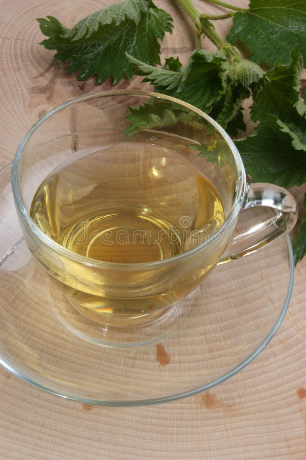 Chá erval orgânico em um copo foto de stock royalty free