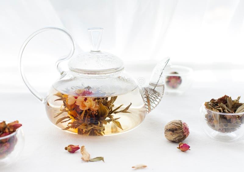 Chá floral asiático tradicional em um bule de vidro fotografia de stock royalty free