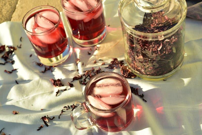 Chá gelado feito com obscuridade - os hibiscus vermelhos florescem as pétalas imagem de stock