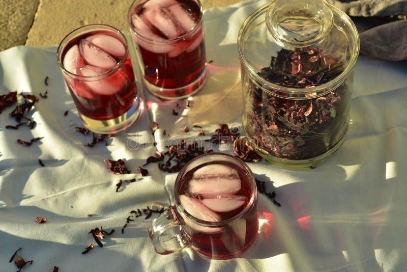 Chá gelado feito com obscuridade - os hibiscus vermelhos florescem as pétalas fotografia de stock royalty free