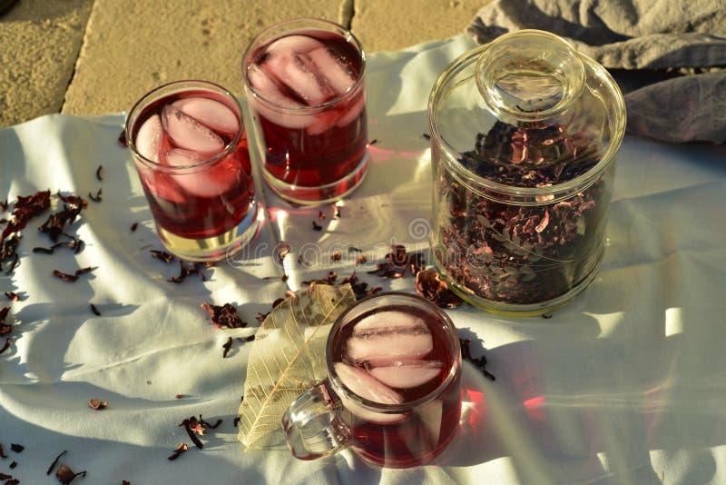 Chá gelado feito com obscuridade - os hibiscus vermelhos florescem as pétalas imagens de stock royalty free