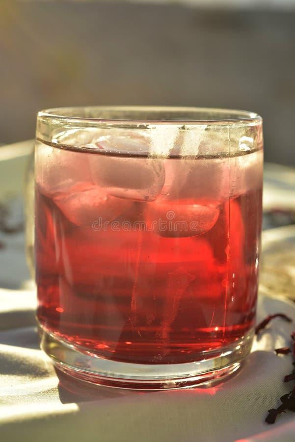 Chá gelado feito com obscuridade - os hibiscus vermelhos florescem as pétalas fotos de stock