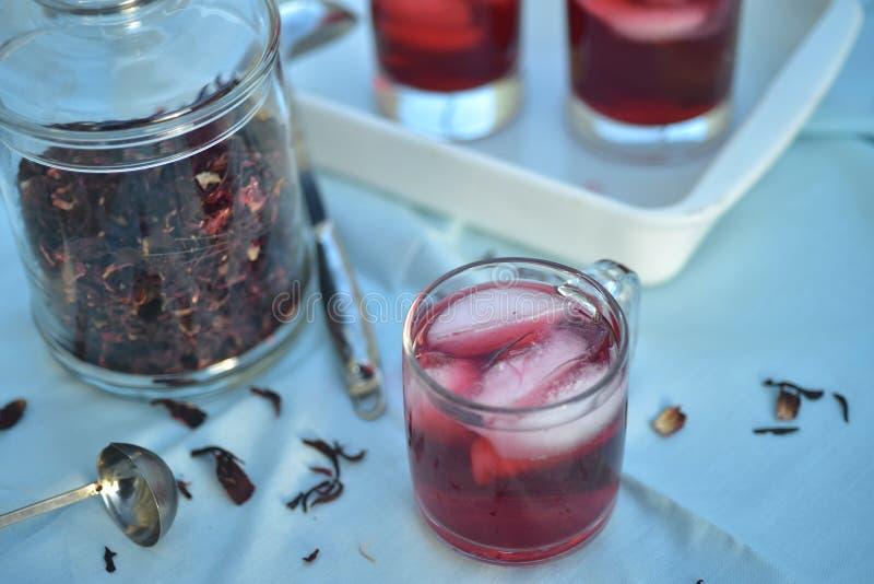 Chá gelado feito com obscuridade - os hibiscus vermelhos florescem as pétalas foto de stock royalty free