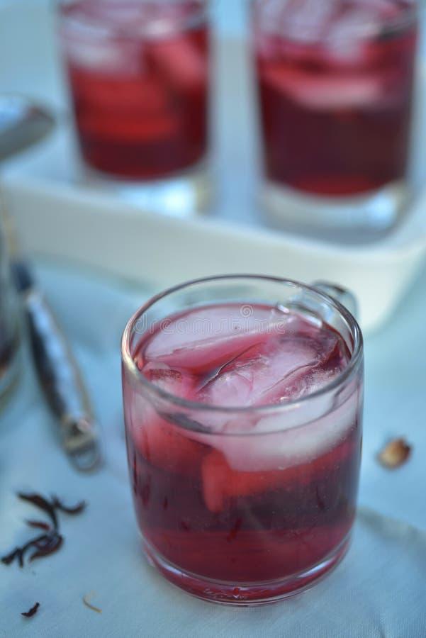 Chá gelado feito com obscuridade - os hibiscus vermelhos florescem as pétalas foto de stock