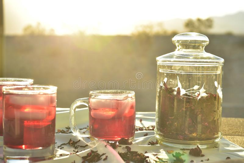 Chá gelado feito com obscuridade - os hibiscus vermelhos florescem as pétalas imagem de stock royalty free