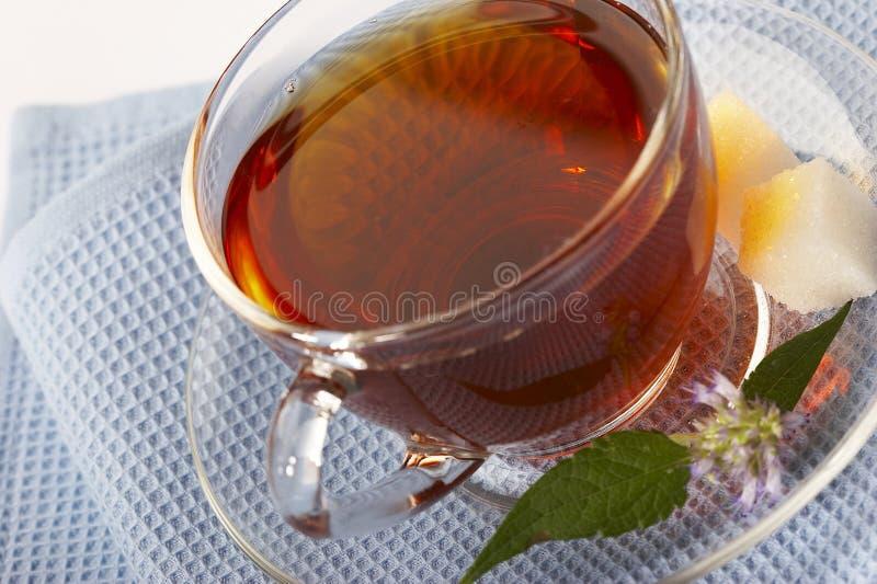 Chá herbáceo - droga natural fotos de stock royalty free