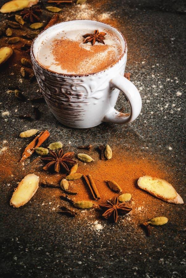 Chá indiano tradicional com especiarias - canela de chai do masala, carda fotografia de stock