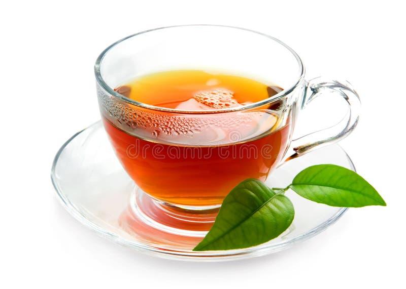 Chá preto foto de stock