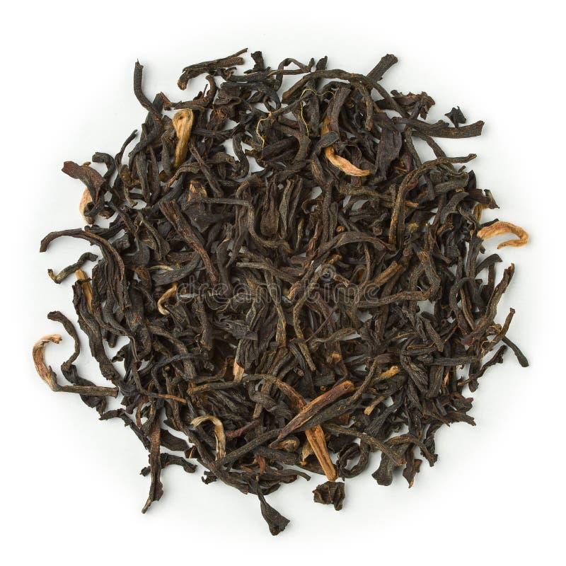 Chá preto Assam Mokalbari foto de stock royalty free